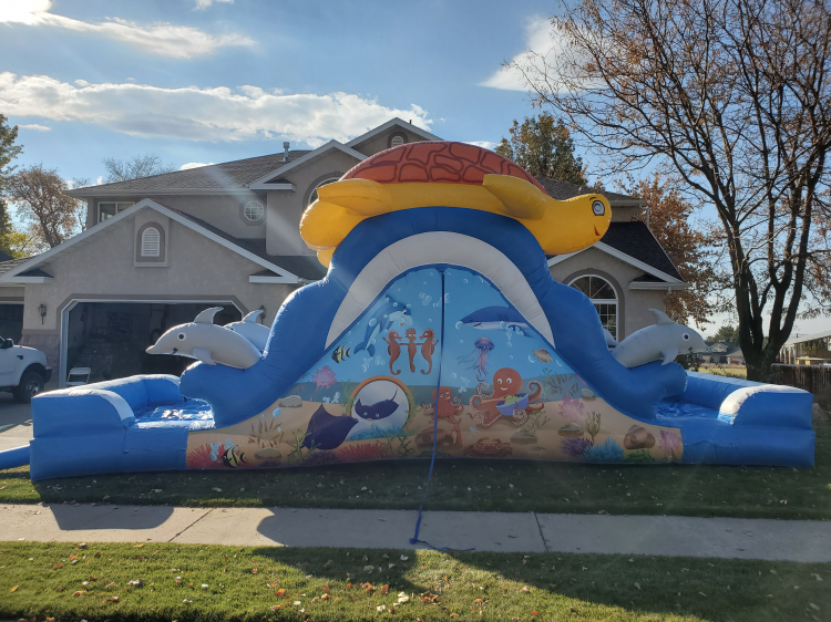 13' Turtles and Dolphins Endless Looping Water Slide